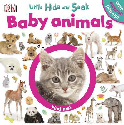 Little Hide and Seek By Dorling Kindersley, Inc.